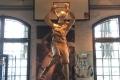 im Deutschen Sport- und Olympiamuseum in Köln