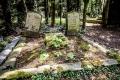 auf dem Melatenfriedhof in Köln