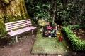Grab von Dirk Bach auf dem Melatenfriedhof in Köln