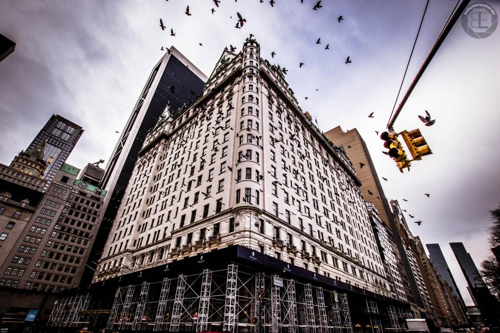 New York City 2019: Plaza