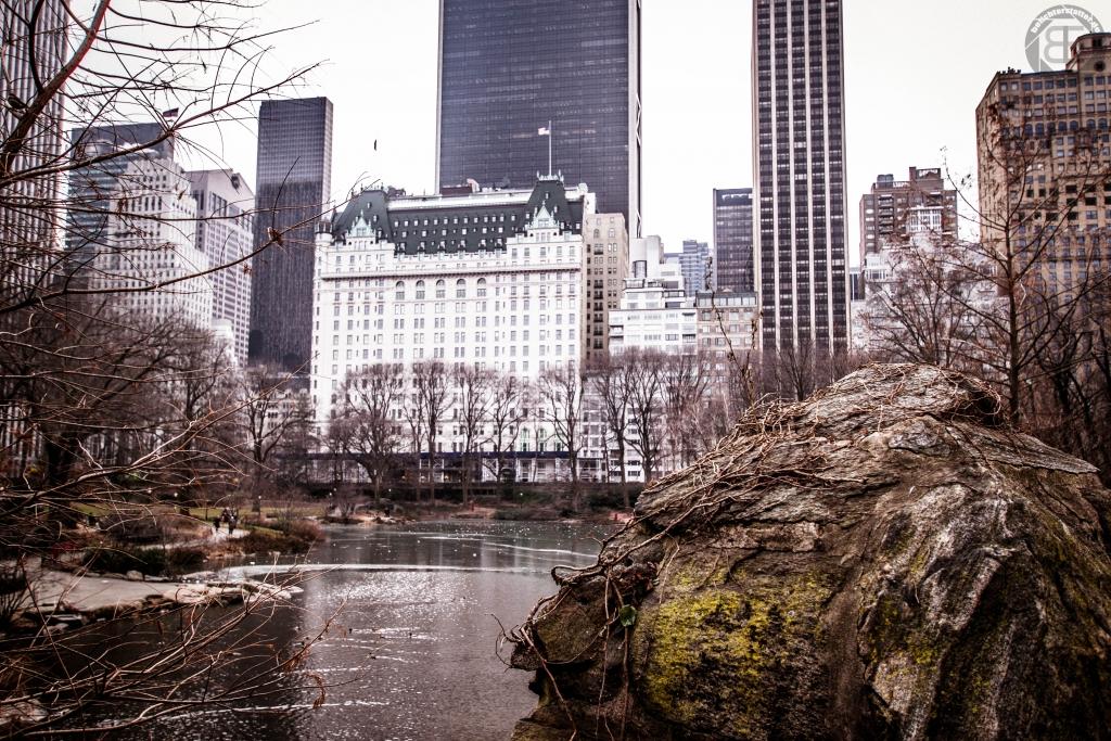 New York City 2019: Plaza von der Gapstow Bridge aus