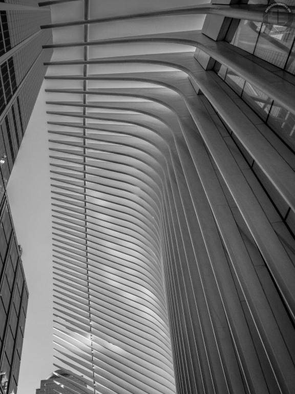 New York City 2019: The Oculus
