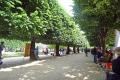 Park hinter der Notre-Dame de Paris