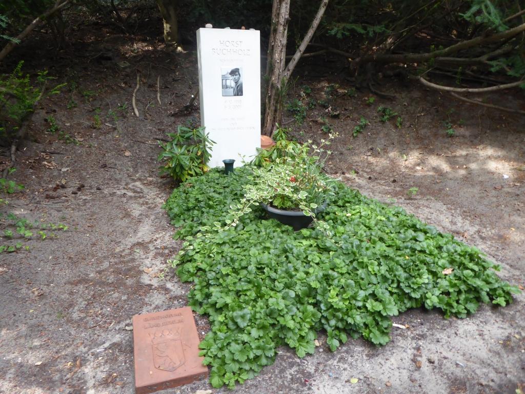 Grab von Horst Buchholz auf dem Waldfriedhof Heerstraße in Berlin