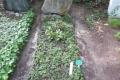Grab von Vadim Glowna auf dem Waldfriedhof Heerstraße in Berlin