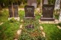 Grab von Sokol auf dem Wiener Zentralfriedhof