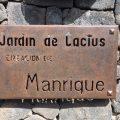 Jardin-de-Cactus-auf-Lanzarote-iPhone-Bild